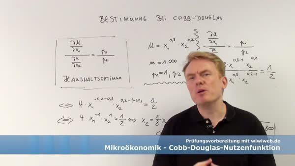 Die Mathematische Bestimmung Bei Einer Cobb Douglas Nutzenfunktion